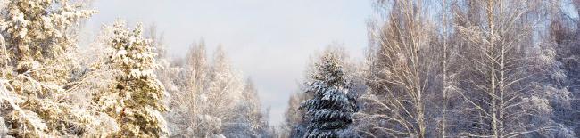 winterrunde_bild_klein